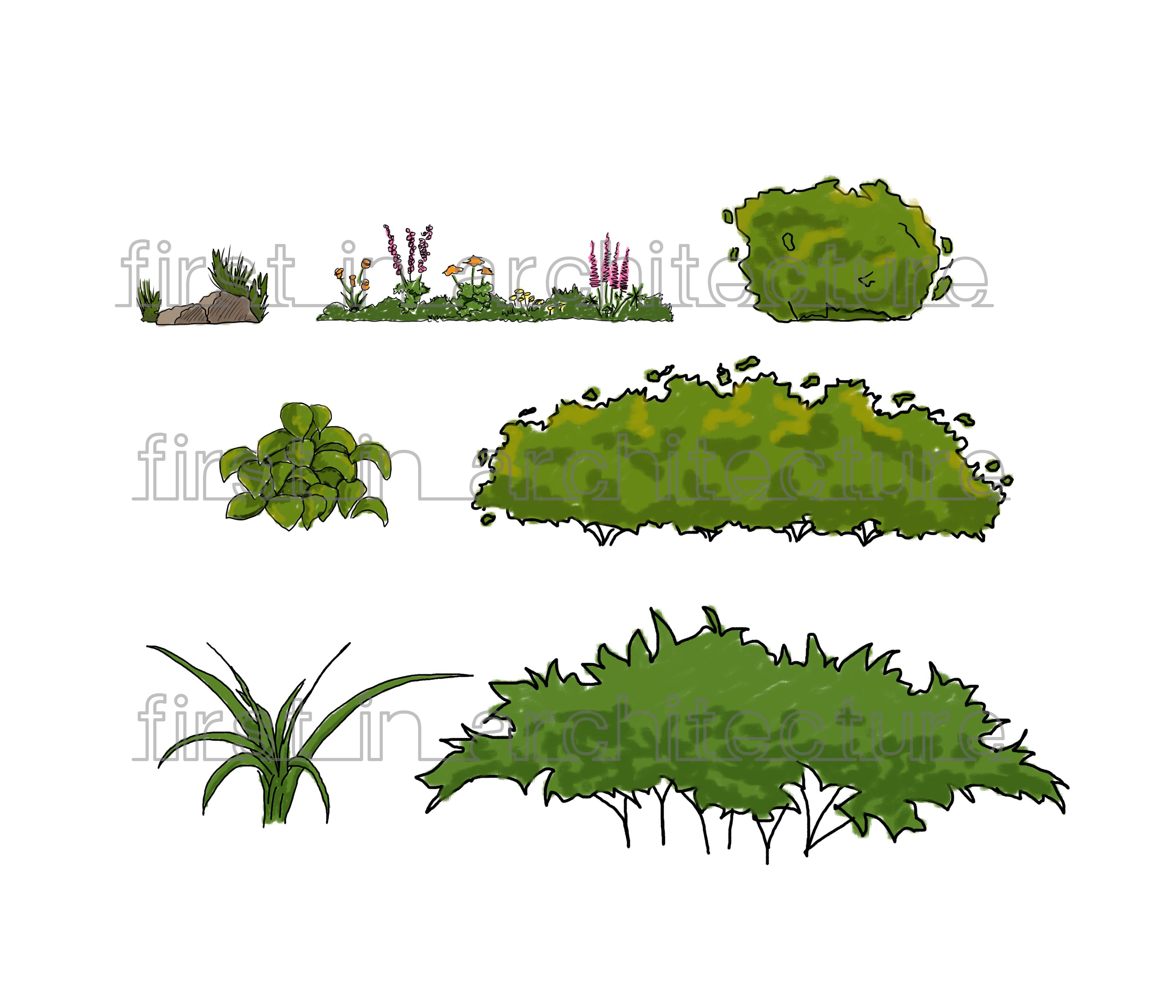 Sketch Up Components Sketchy Plants And Shrubs First In Architecture