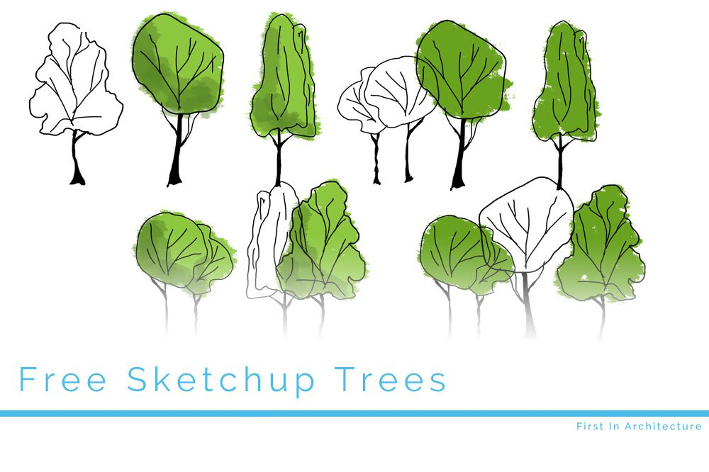 Free Tree Elevations For Sketchup