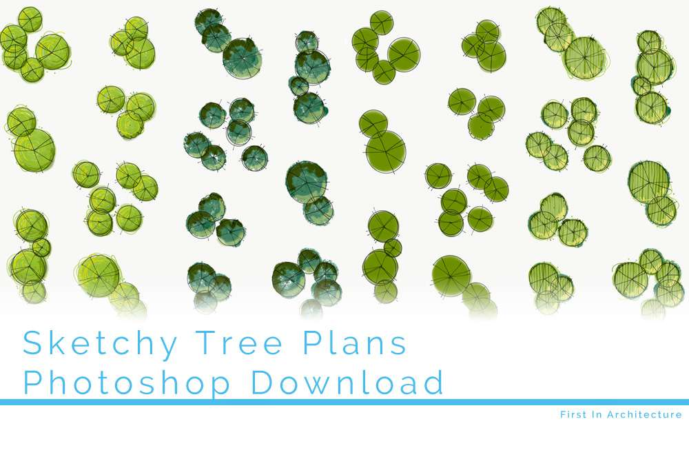 Sketchy Tree Plans To Download First In Architecture