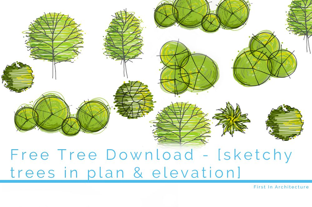Elevation And Plan Of Trees : Free tree download set first in architecture